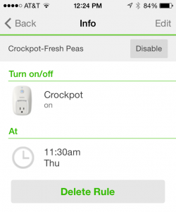 WeMo Crock-Pot Rule