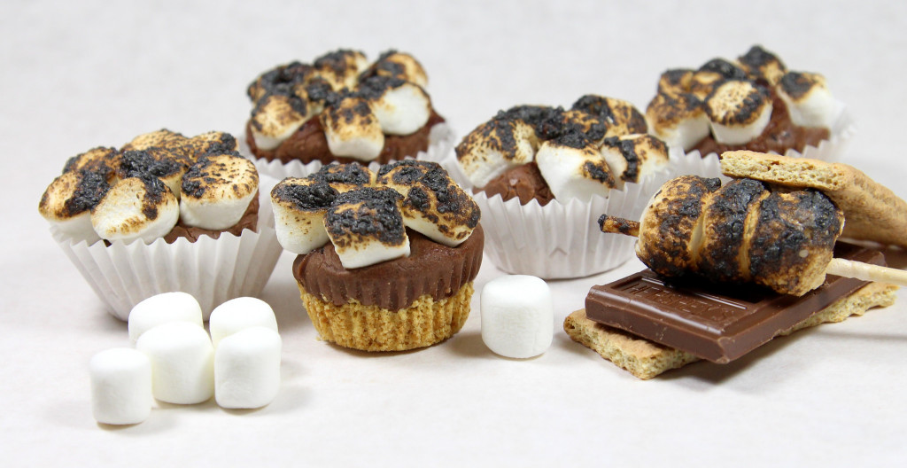Smores Fudge Tartlets